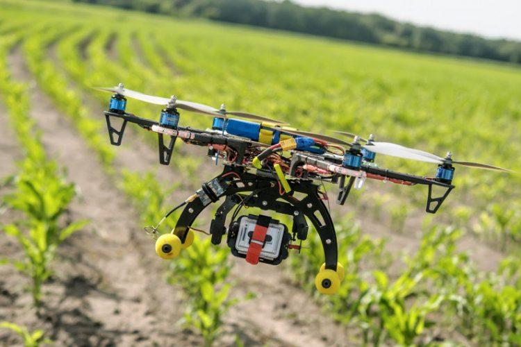 EL impacto positivo de los drones en la agricultura